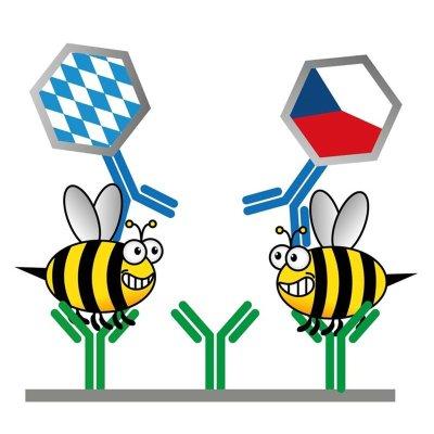 Bayerisch-tschechisches Forschungsprojekt; Bildquelle: Matthias Mickert