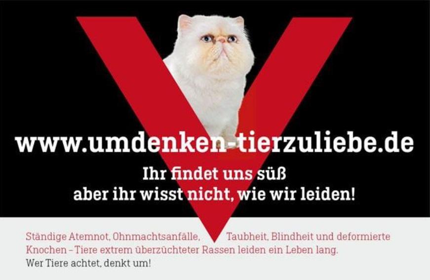 Plakatkampagne der Tierärztekammer Berlin gegen Qualzuchten