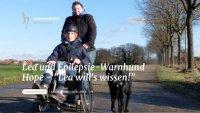 """Schwerpunkt Epilepsie beim Hund auf Tierhalterportal """"Hunderunden.de"""""""