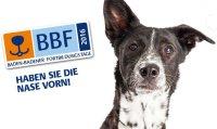 BBF Baden-Badener Fortbildungstage