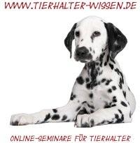 Online-Seminare für Hundezüchter und -Halter