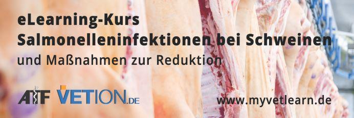 eLearning-Kurs Salmonelleninfektionen bei Schweinen und Maßnahmen zur Reduktion