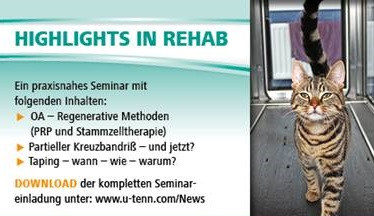Seminar: Highlights in Rehab