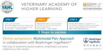 Online symposium: Multimodal Pain Approach
