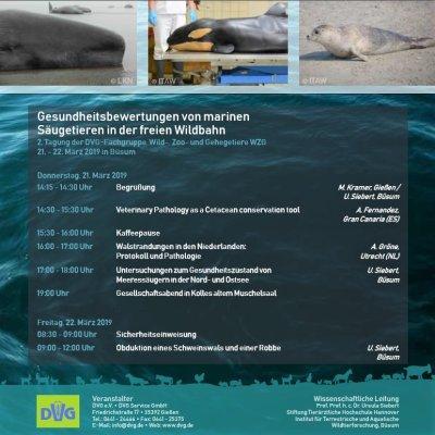 Wissenschaftliche Tagung zur Gesundheit von Meeressäugern