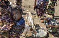 Hilfe für Tiere und Menschen in Äthiopien ; Bildquelle: Christoph Gödan (ToGeV)