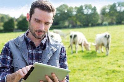 Über den neuen Online-Shop von Bayer können Tierärzte ihre Praxisapotheke bequem für den täglichen Bedarf bestücken.; Bildquelle: Bayer Vital GmbH