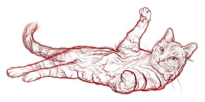 Feline Hypertension � Ursache oder Folge häufiger Erkrankungen der älteren Katze?; Bildquelle: Boehringer Ingelheim