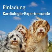 Kardiologie-Expertenrunde von Boehringer Ingelheim