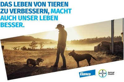 Elanco schließt Übernahme von Bayer Animal Health ab
