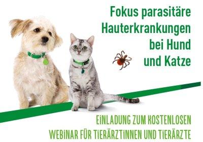 Kostenloses Webinar: Fokus parasitäre Hauterkrankungen bei Hund und Katze