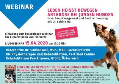 Leben heisst bewegen: Arthrose bei jungen Hunde - Ursachen, Management und Besitzerberatung