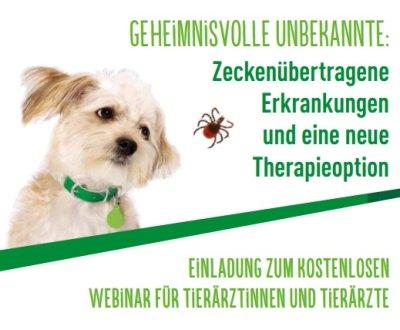 Kostenloses Webinar: Zeckenübertragene Erkrankungen und eine neue Therapieoption