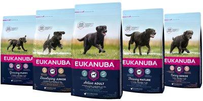 Eukanuba live life well