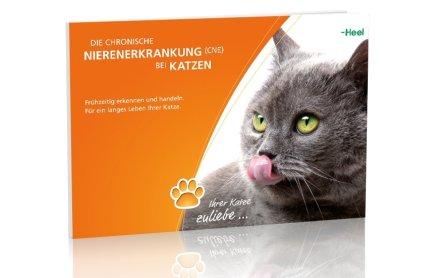 Neu von Heel: CNE-Servicepaket für Katzenhalter | VET-MAGAZIN.de