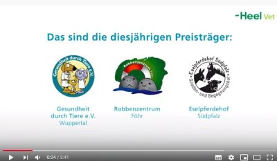 Offizielles Video zu den HelpingVets 2019