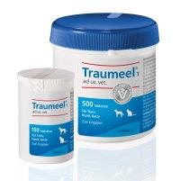 Traumeel® ad us. vet.