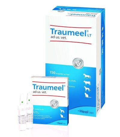 Traumeel® ad us. vet.; Bildquelle: Heel Vet