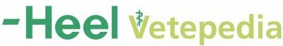 Vetepedia.de - ein Portal mit nützlichen Informationen für jeden Tierarzt