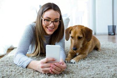 heiland.com und MSD launchen einzigartigen Erinnerungsservice für Tierhalter; Bildquelle: heiland