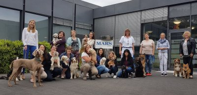 Mars feiert 20 Jahre Hunde im Büro; Bildquelle: Mars Petcare