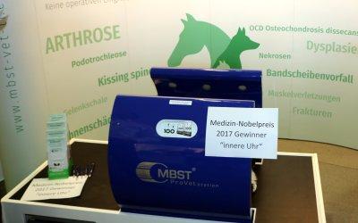 MBST Kernspin-Vet-Therapiegerät