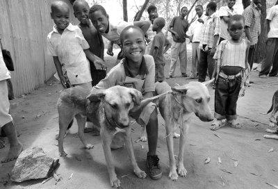 Kinder spielen mit möglicherweise infizierten Hunden; Bildquelle: MSD Tiergesundheit