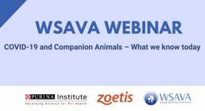Webinar weiterhin abrufbar: COVID-19 and Companion Animals � What we know today