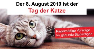 Aktionsprofil zum 'Tag der Katze'