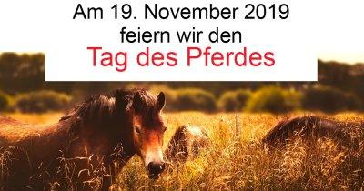 "Am 19. November 2019 feiert Laboklin den ""Tag des Pferdes"""