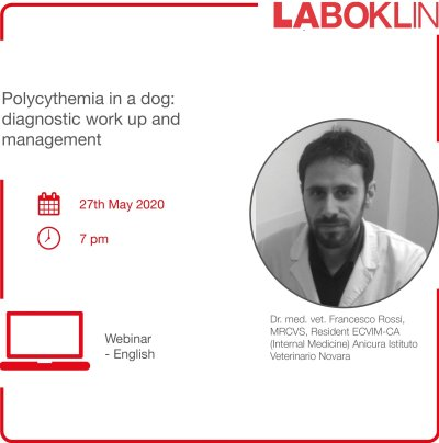 Too many erythrocytes may be as harmful as a too small number. This webinar on 27th May 2020 will show an interesting and peculiar case of polycythaemia in a Miniature Schnauzer dog
