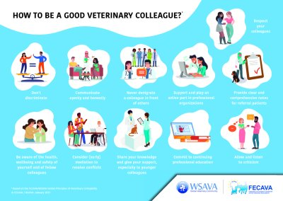 FECAVA and WSAVA: Global Principles of Veterinary Collegiality